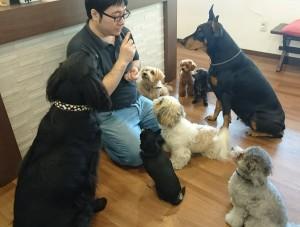 お犬様_181015_0018