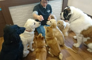 お犬様_181103_0120