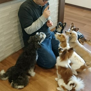 お犬様_181202_0279