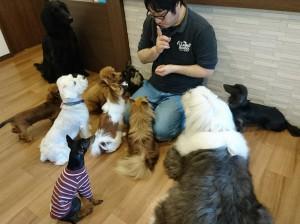 お犬様_181204_0301