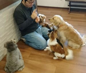 お犬様_181210_0340