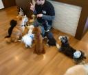 犬ちゃん3_201124_4