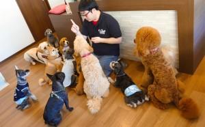 犬ちゃん2_200627_0407