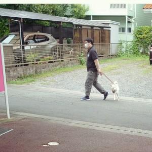 犬ちゃん2_200729_3