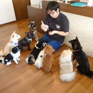 犬ちゃん2_200913