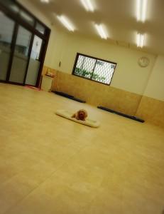 犬ちゃん_181016_0018