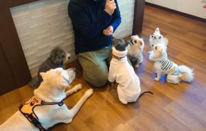 犬ちゃん_200108_0632