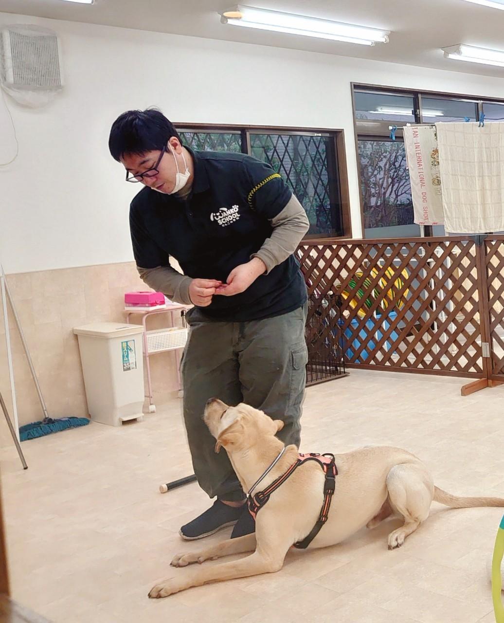 ジョーくん練習中。